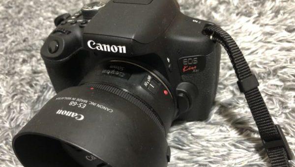 柳のカメラ